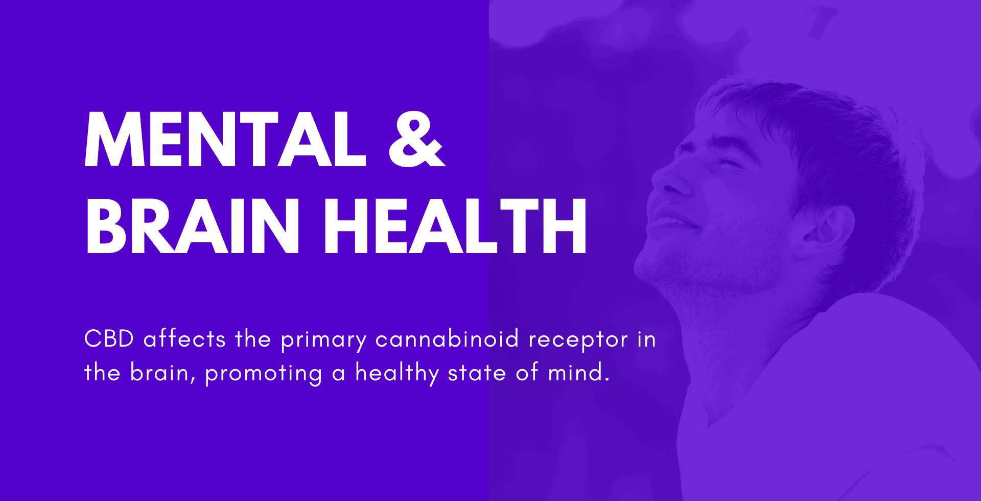 CBD Benefits - Mental Health